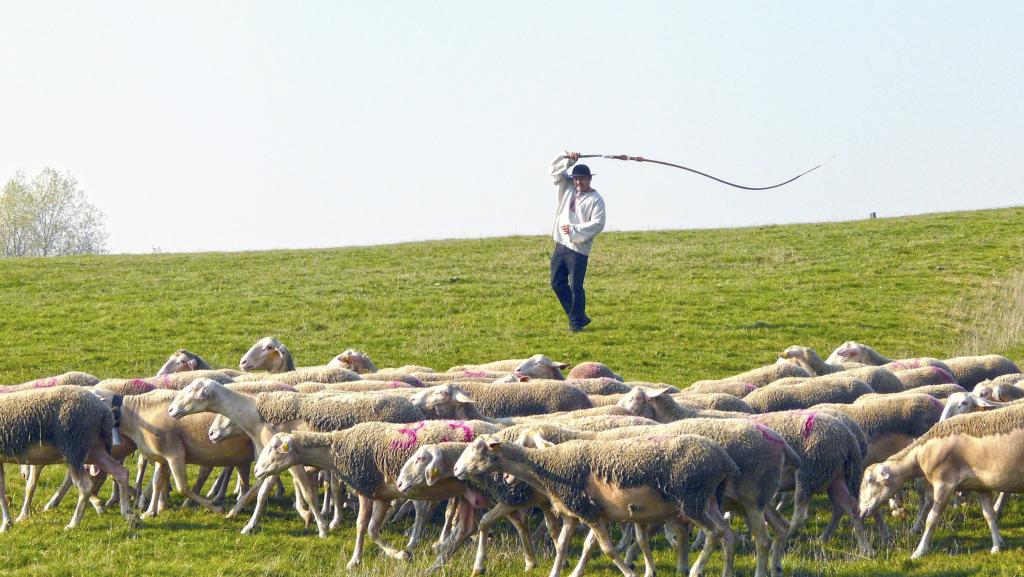 Spisy štátnej bezpečnosti v Tisovej vile? Nie, tam bol Výskumný ústav ovčiarsky, tvrdil Vladimír Mečiar. Foto -TASR