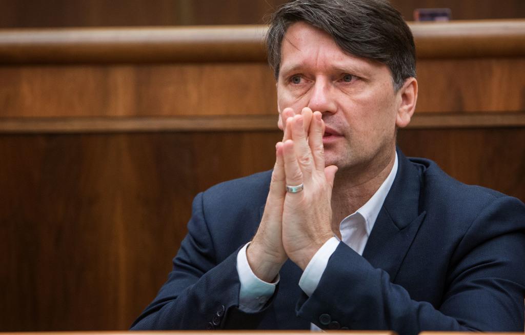 Minister kultúry v parlamente. Foto N - Tomáš Benedikovič