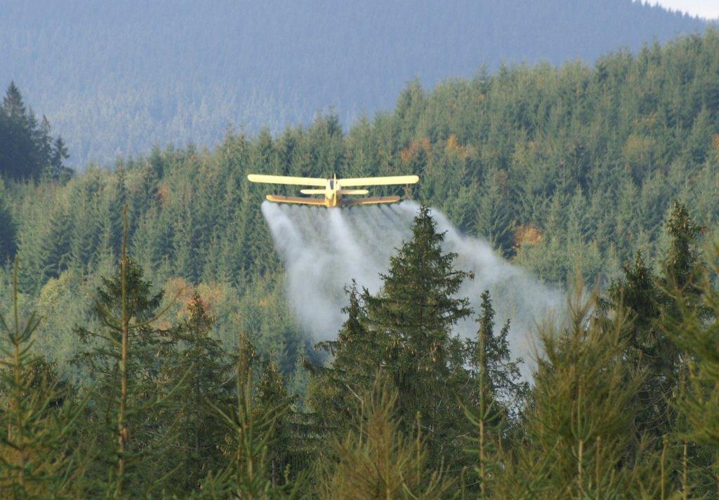 postrekové lietadlo príroda chradnúci ihliènatý les hory mladé smrekové porasty ihlièòany