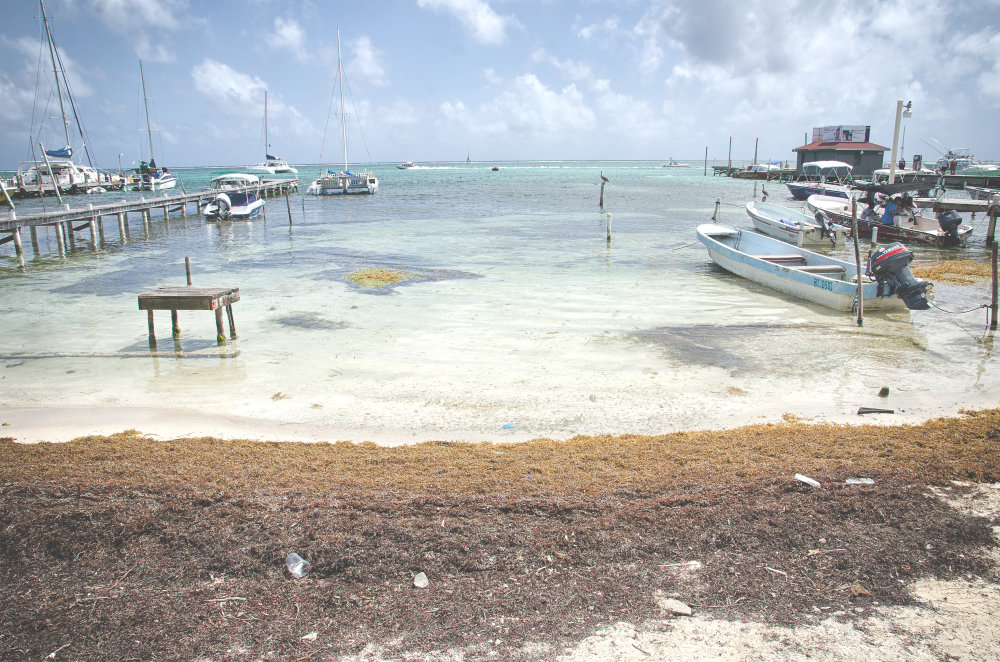 Koralové ostrovy, na akom žije aj Mello, sú oázami bohatstva a dovolenkovej pohody. FOTO - TOMÁŠ FORRÓ