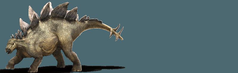 stegosaurus-info-graphic