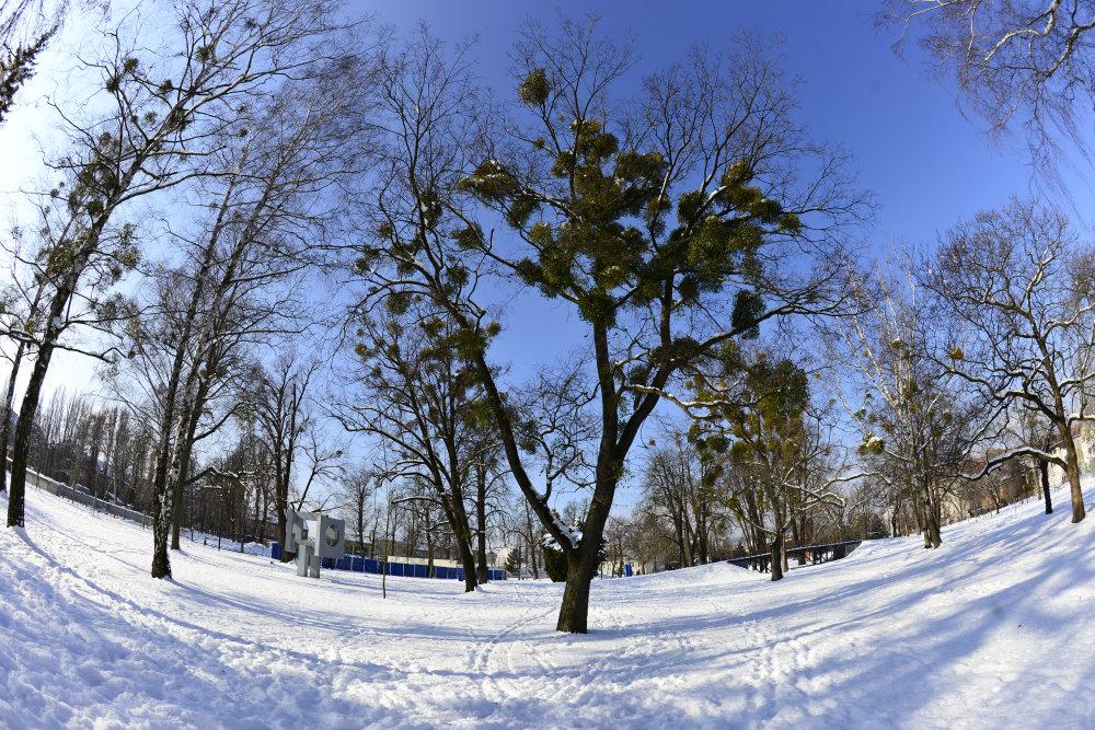 Mestský park v Košiciach medzi žželezničnou stanicou a historickým centrom mesta. FOTO TASR – Milan Kapusta