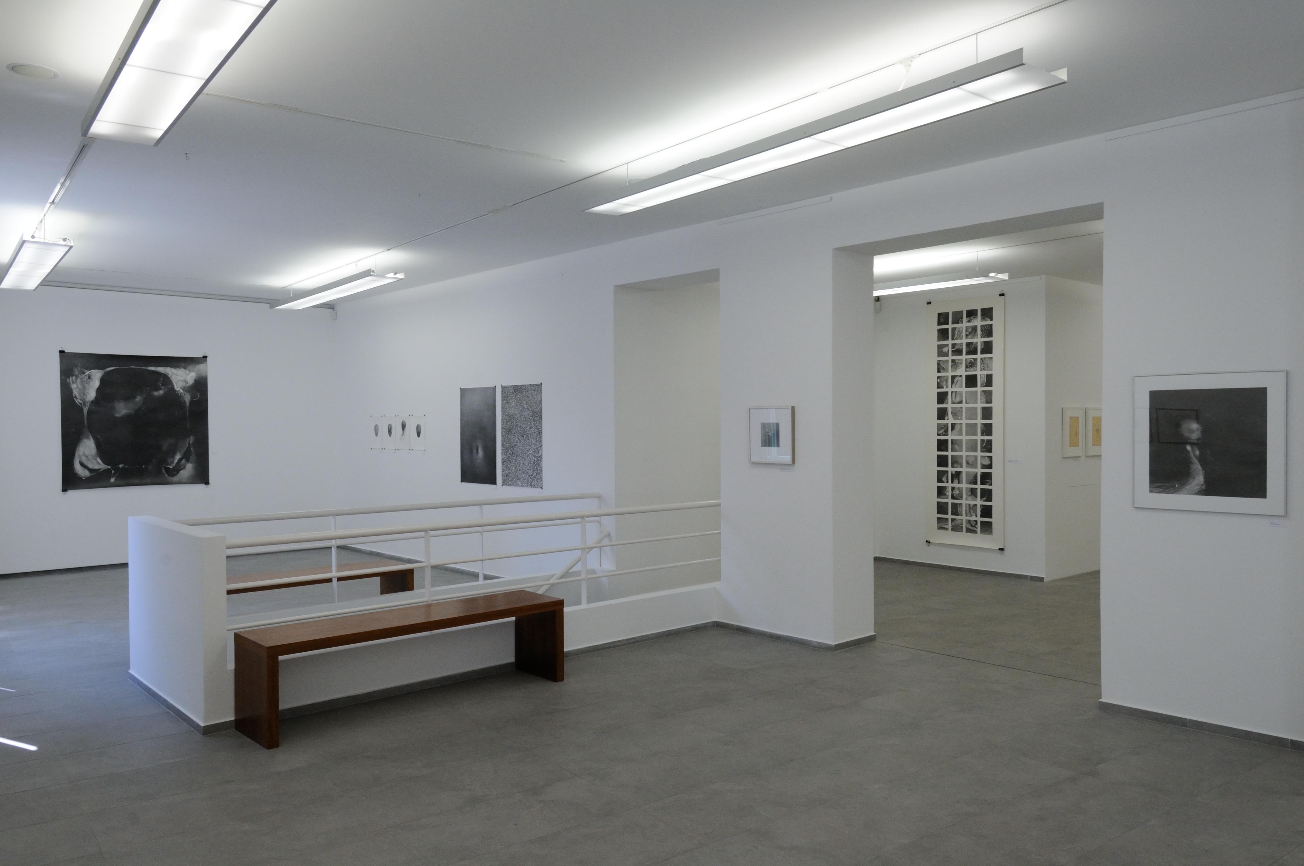 Výstava Kataríny Slaninkovej v bratislavskej Galérii 19. Foto - Peter Piovarcsy