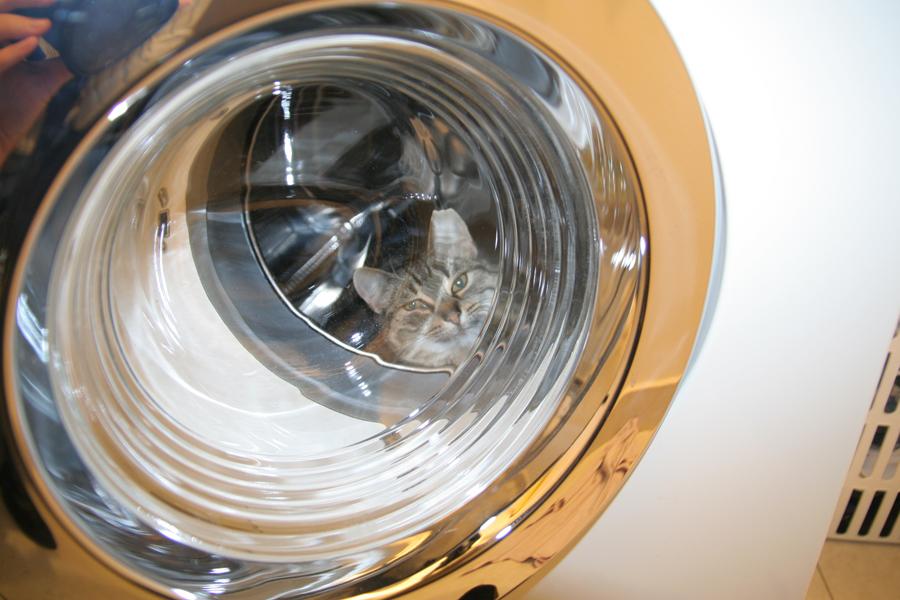 Pri jednom praní sa uvoľní do obehu asi dve tisíc mikrovlákien. Ilustračné foto - Flickr