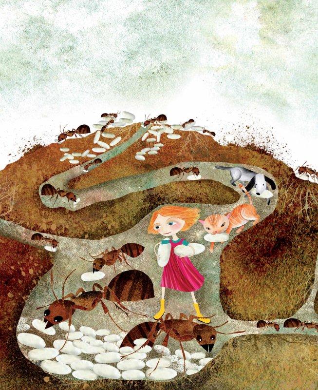 Ilustrácia z knihy Zornička