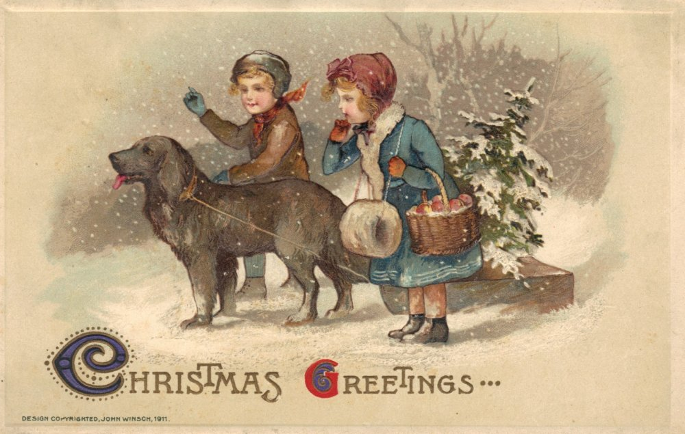 Bruna McGuire christmas dog postcard front