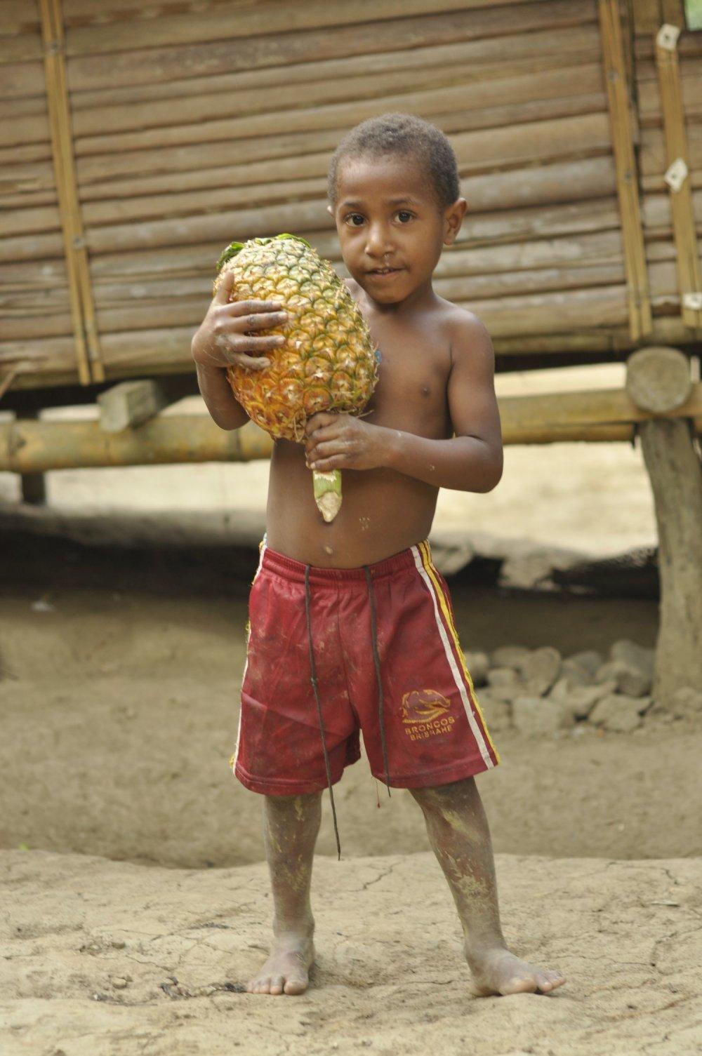 Na Papui Novej Guinei rastú úžasné ananásy.