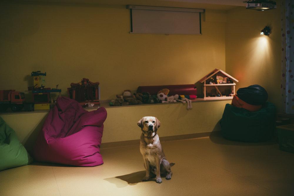 Pri terapiách s rodinami využíva Plamienok aj psa Grófa. Foto: Jakub Čaprnka