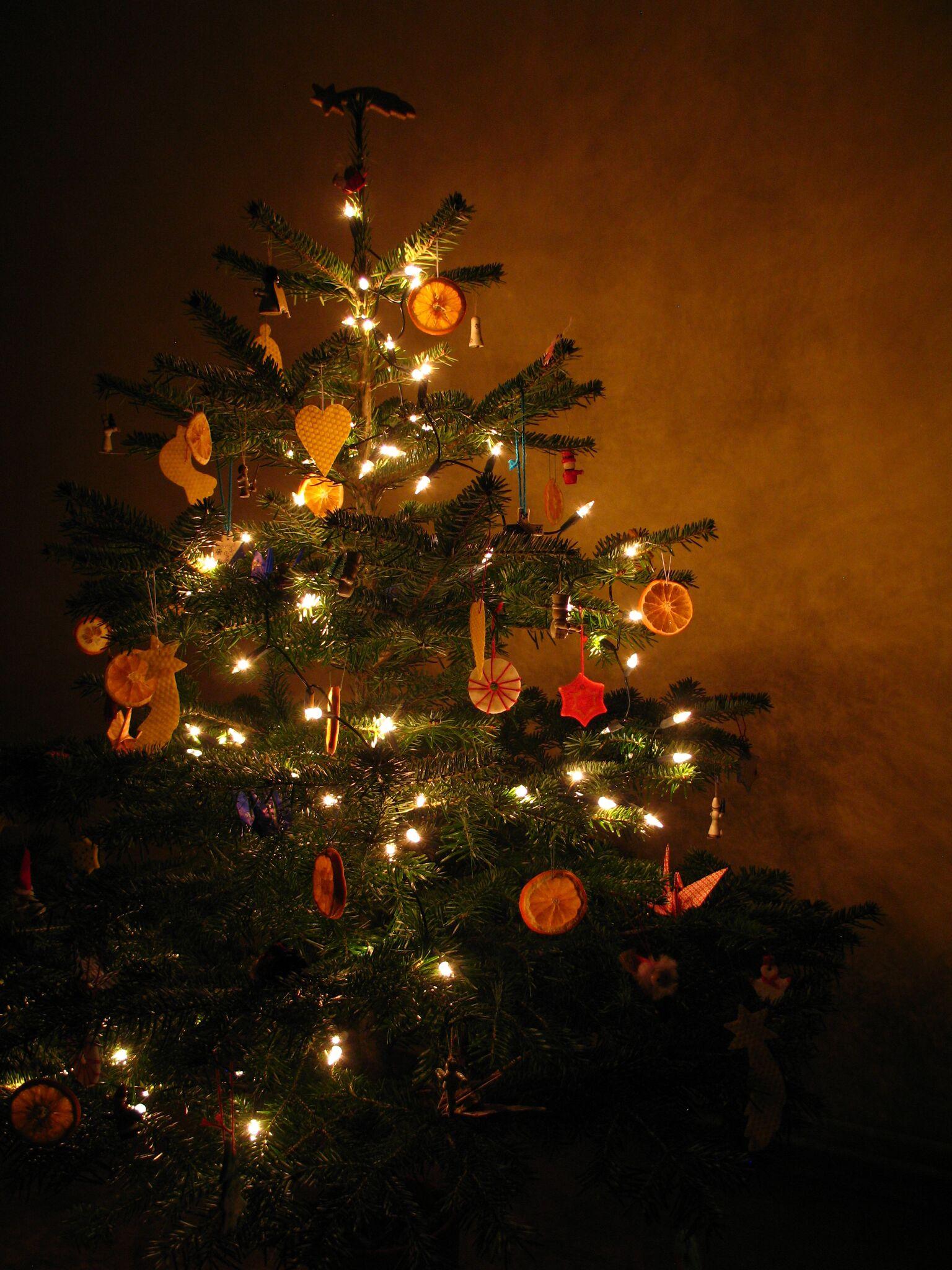 japonská kanaďanka Vianoce