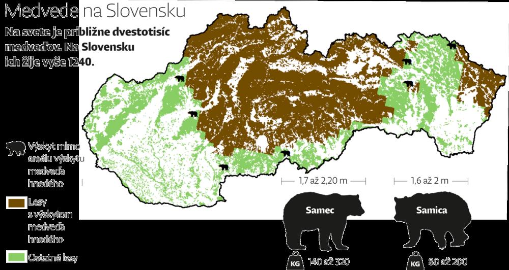 medvede_mapa
