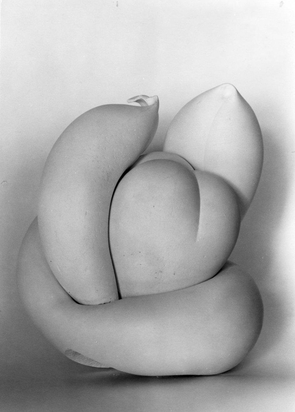 Štvordielna plastika III. - Klíčenie, 1966. Foto - Gabriel Bodnár