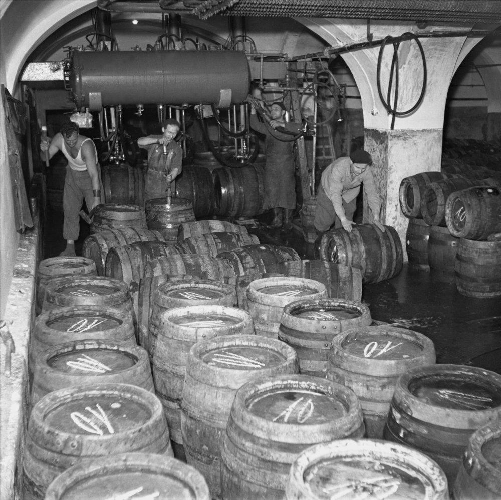 Bratislavský pivovar Stein v roku 1952. Foto - archív TASR