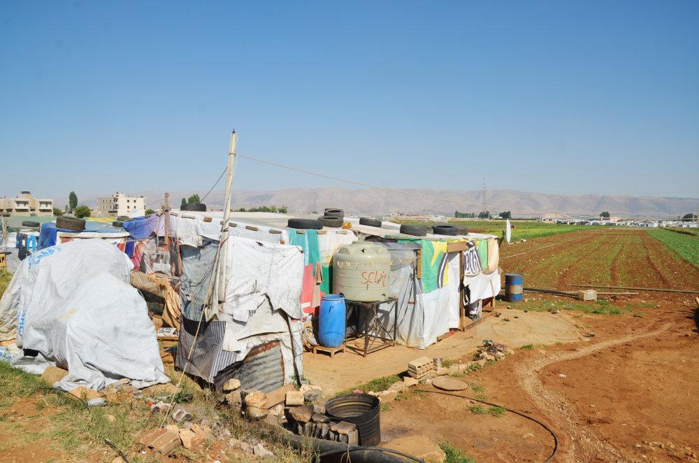 Utečenci bývajú často priamo na políčku, kde sa sezónne prácu môžu zostať bývať. FOTO - MIREK TÓDA
