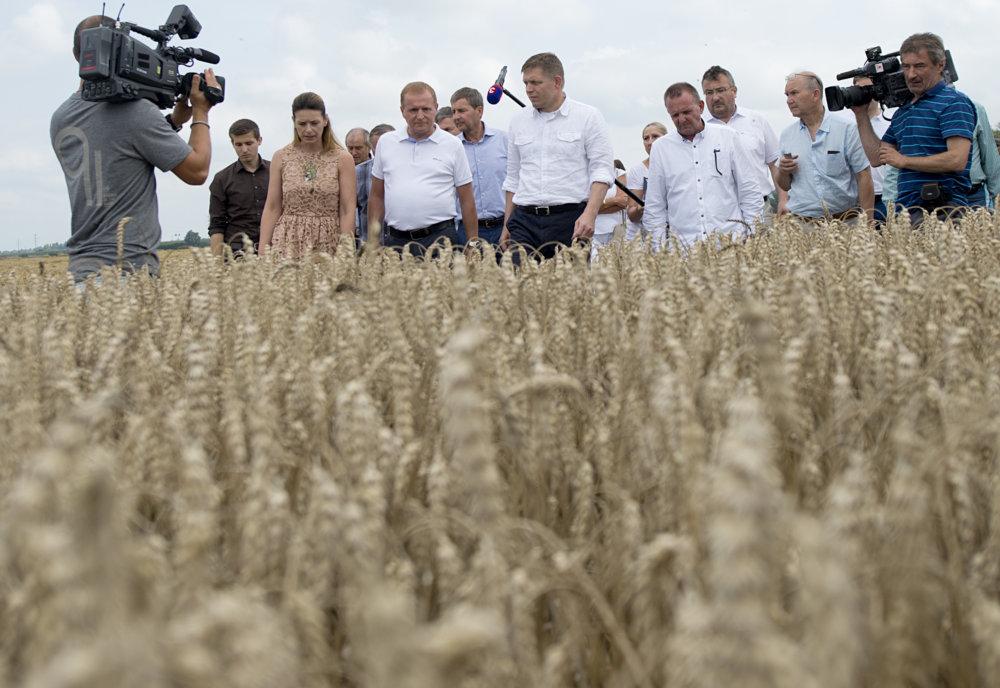 Fico, poľnohospodári a novinári na poli pri Bratislave. Foto - TASR