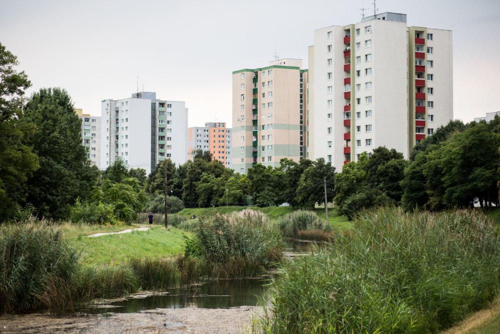 Príjemné miesto na život - zákutia pri Chorvátskom ramene. foto N - Vladimír Šimíček