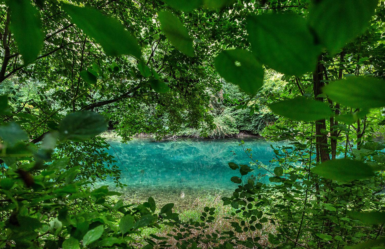 21. 9. 2016, Bratislava. Druhá najväčšia vnútrozemská riečna delta v Európe bude možno naším desiatym národným parkom. Národný park Podunajsko. Foto N - Tomáš Benedikovič