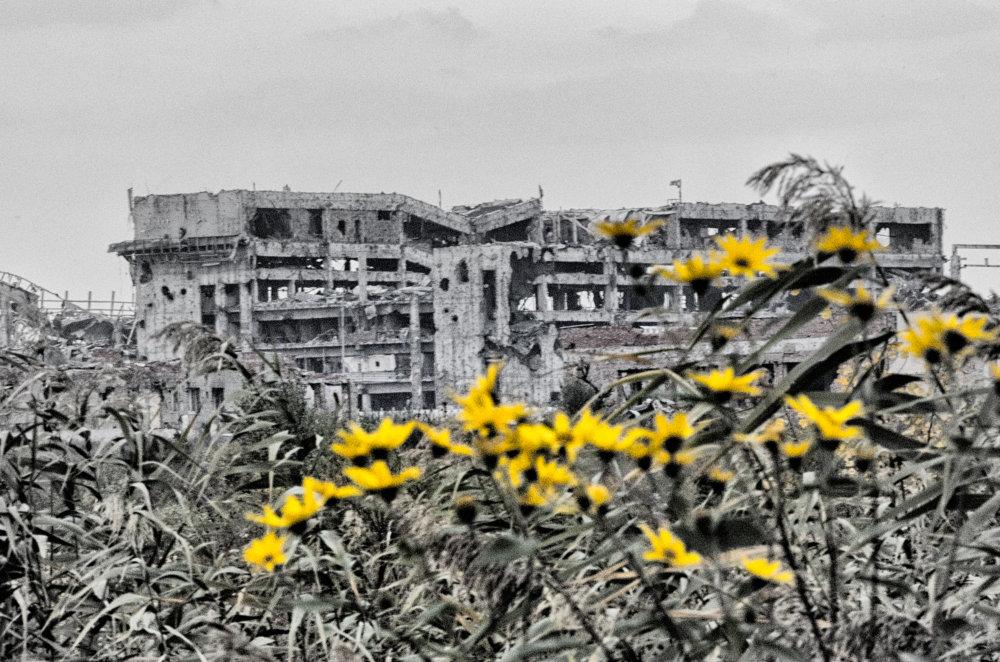 Donecké letisko, kedysi skvost architektúry. Dnes patrí k najzničenejším oblastiam doneckého konfliktu. Celé okolie je zamínované. Foto N - Tomáš Forró