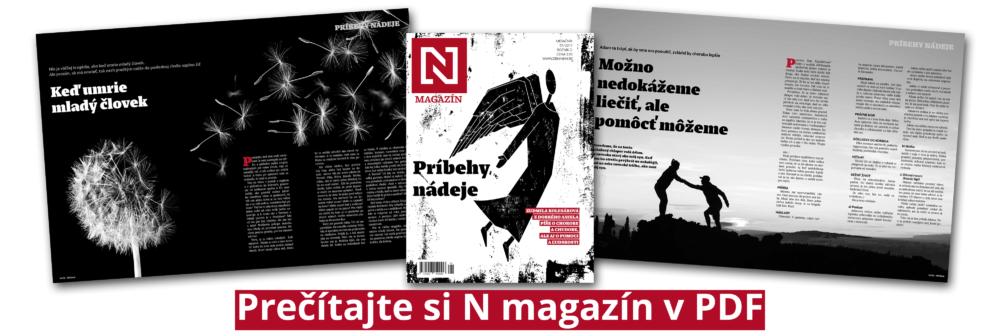 n-magazin-pdf-avizo
