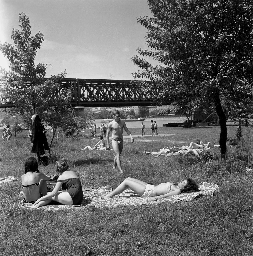Máj 1964 na petržalskej strane Dunaja. V pozadí Starý most. Foto - TASR