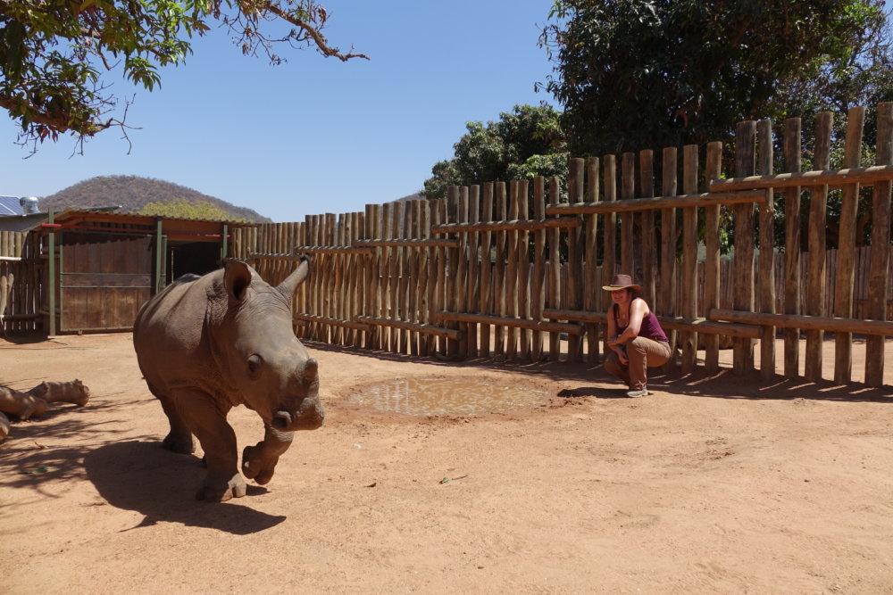 Pavla Říhová na návšteve nosorožcov v Južnej Afrike. Zdroj: Archív P. Říhovej
