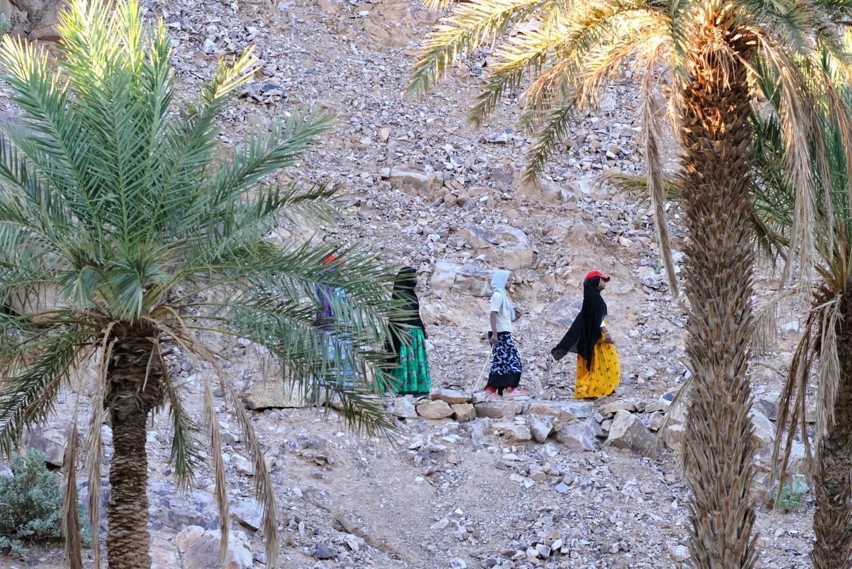 Marocké ženy idú na políčka v oáze v Západnej Sahare. Väčšinu manuálnych prác v moslimskom svete vykonávajú ženy. Fotografia Marcel Uhrin.