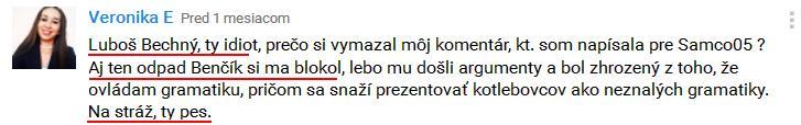 bechny-1