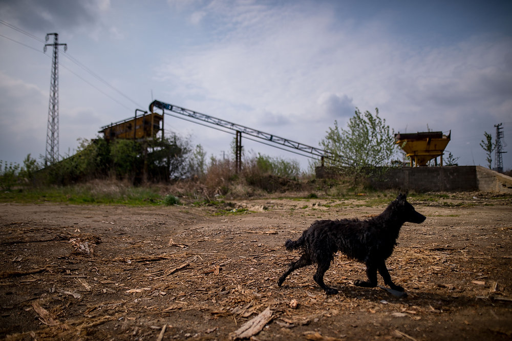 Veľa podnikov vo Vojvodine skrachovalo. Foto N – Vladimír Šimíček