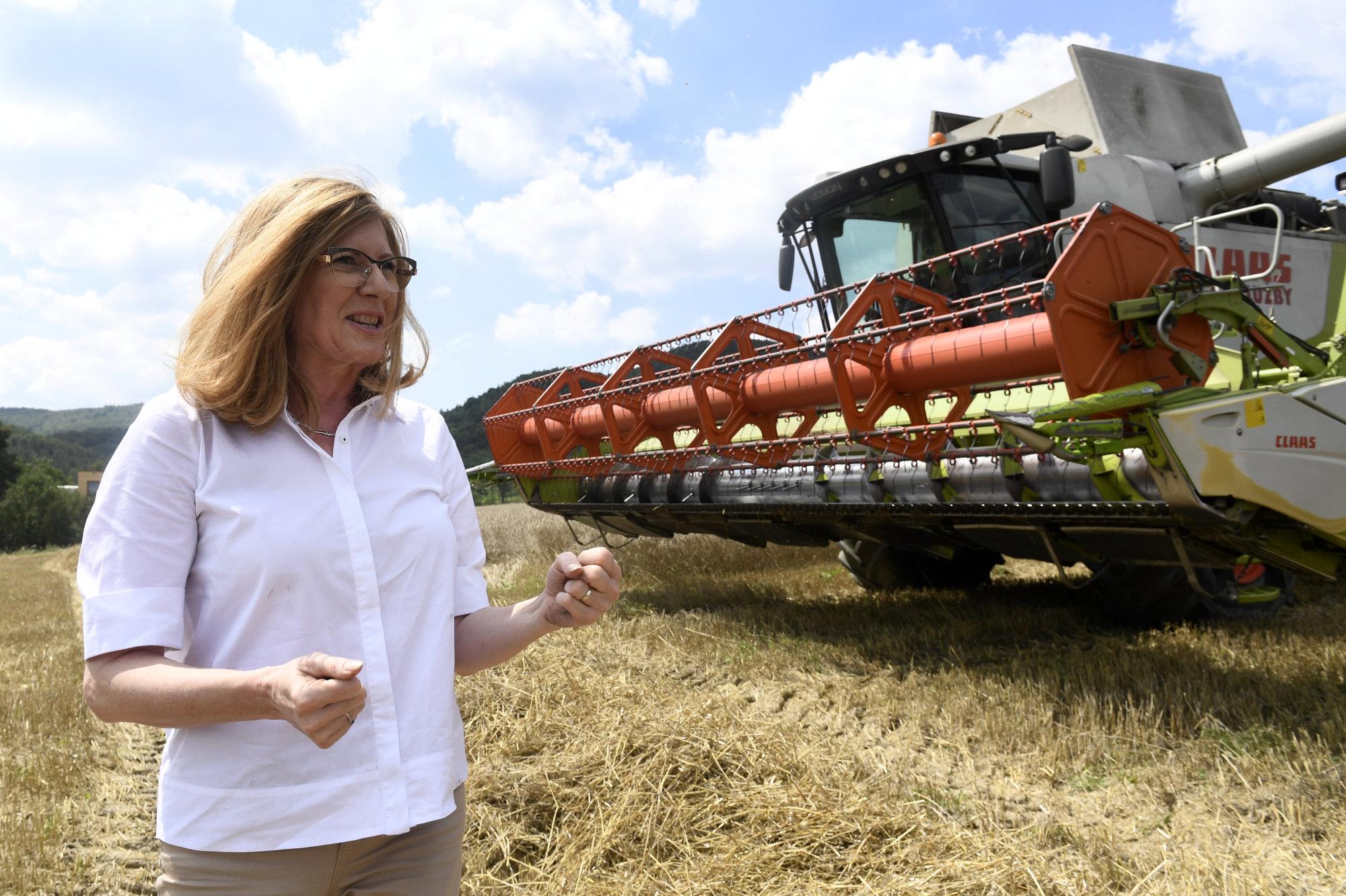 Matečná hovorí, že sa s Čižnárom dohodli na školení ľudí z prokuratúr o agrodotáciách – Denník N