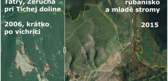 O lesníkovi, ktorý je presvedčený, že musel vyrúbať celý tatranský kopec na hranici Tichej doliny